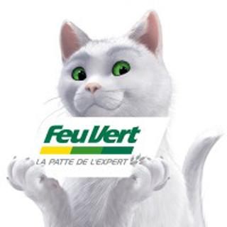 Feu Vert : L'histoire d'un Chat